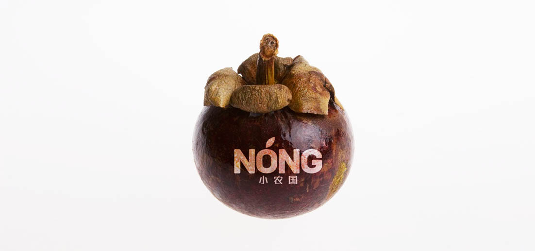 nong-2